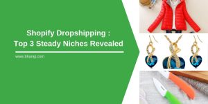 shopify dropshipping top 3 steady niches revealed